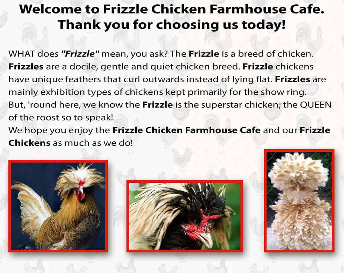 Frizzle Chicken Farmhouse Cafe in Pigeon Forge